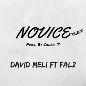 David Meli - Novice (Remix) (ft. Falz)